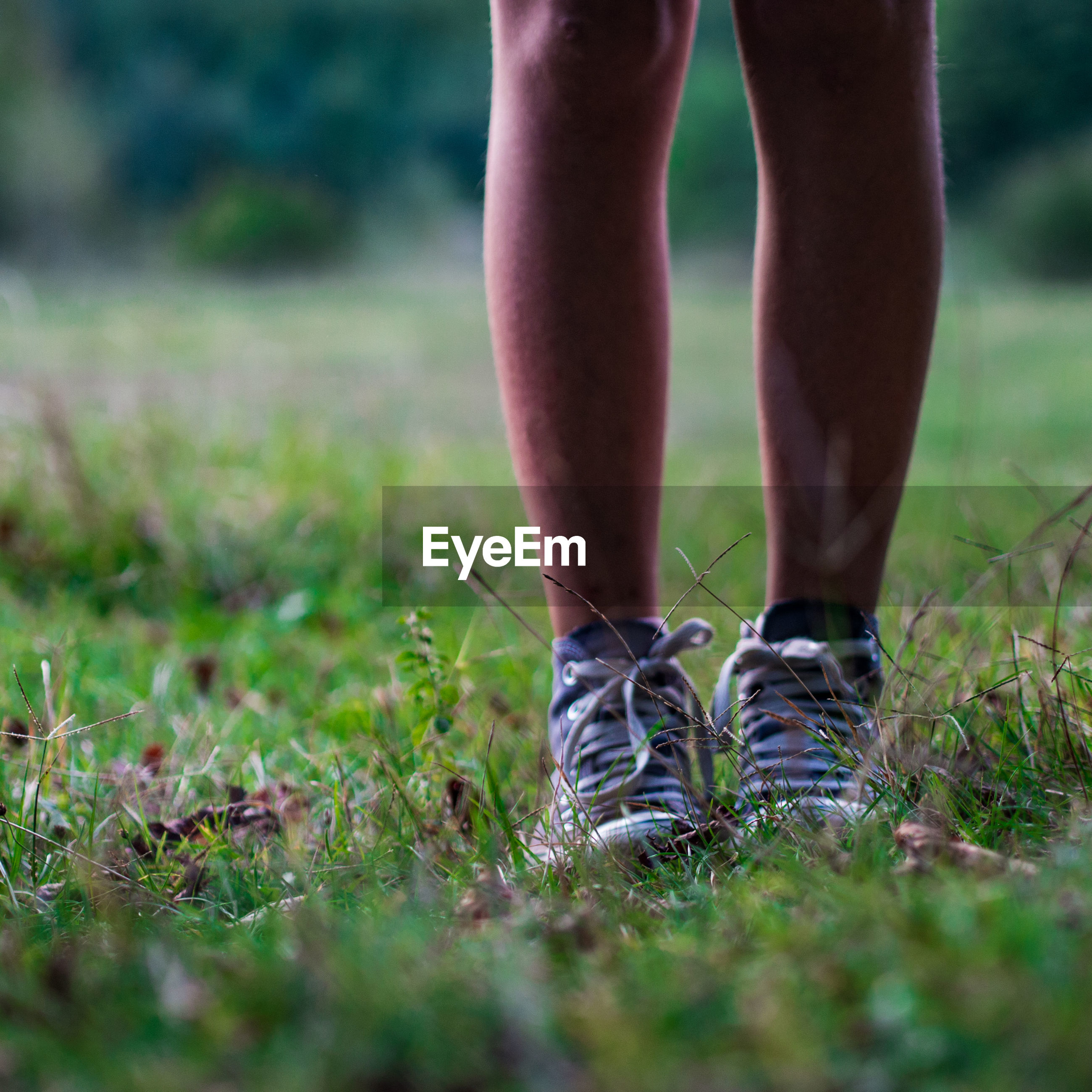 Low section of man wearing shoes standing on grassy field