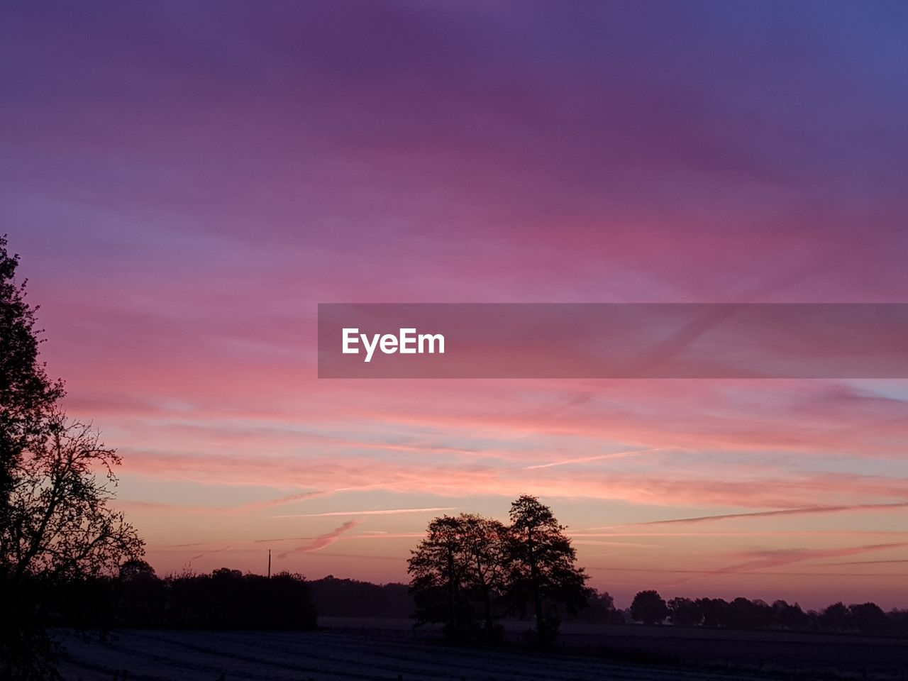 sunset, sky, tree, scenics - nature, beauty in nature, plant, tranquil scene, tranquility, cloud - sky, silhouette, nature, orange color, no people, environment, non-urban scene, landscape, idyllic, outdoors, pink color, field, purple, romantic sky