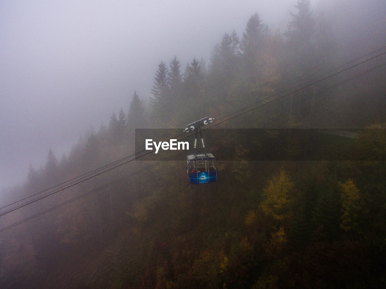 OVERHEAD CABLE CAR IN FOREST DURING FOGGY WEATHER