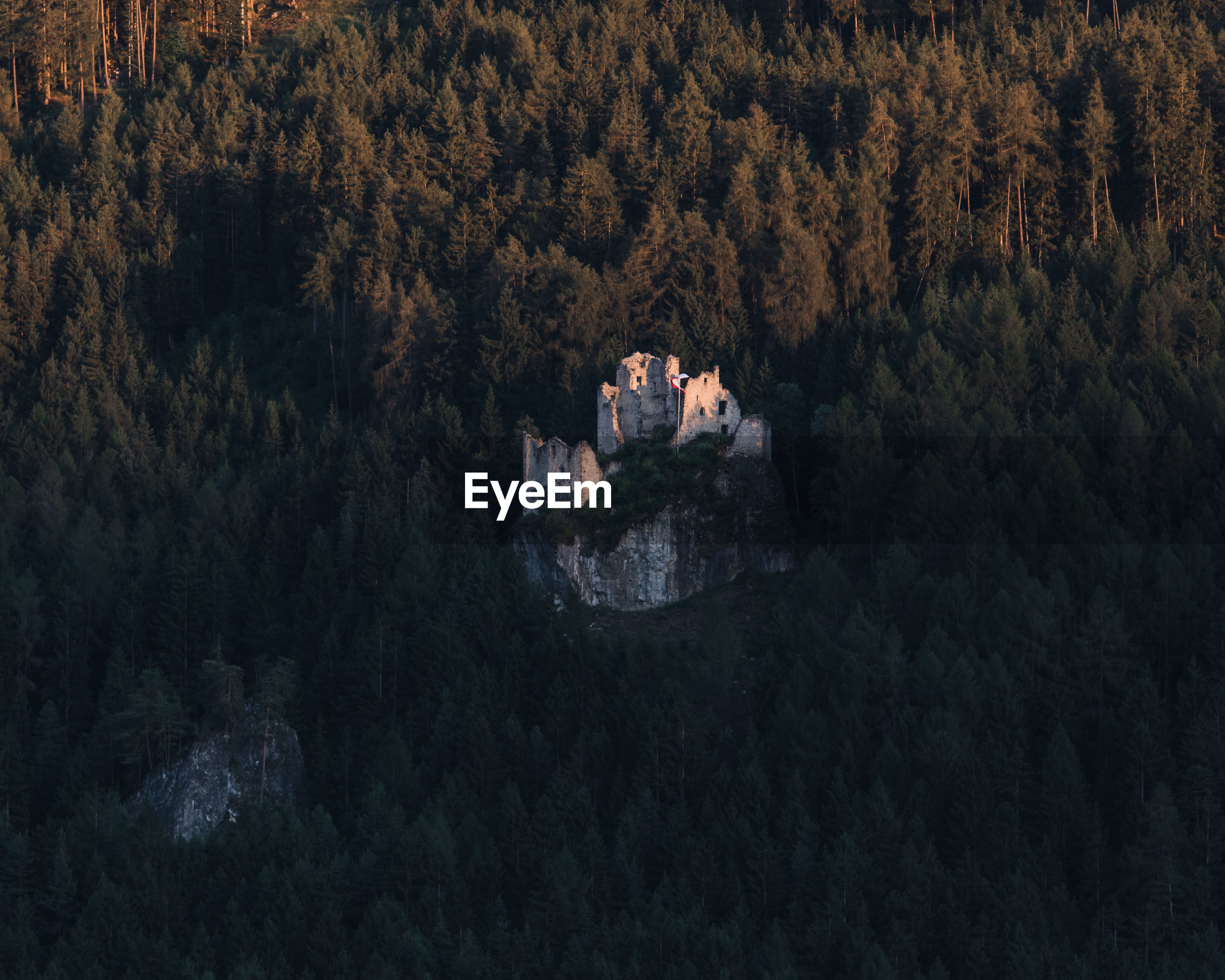 High angle view of trees and old castle in forest