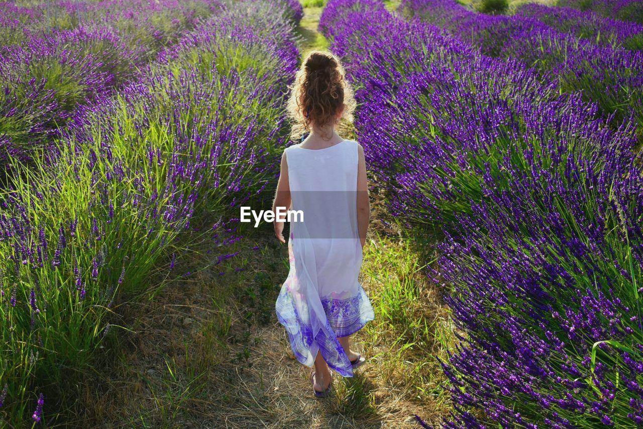 Rear view of little woman standing on lavender field