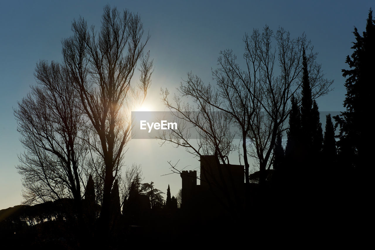 Silhouette Tree Against Sky