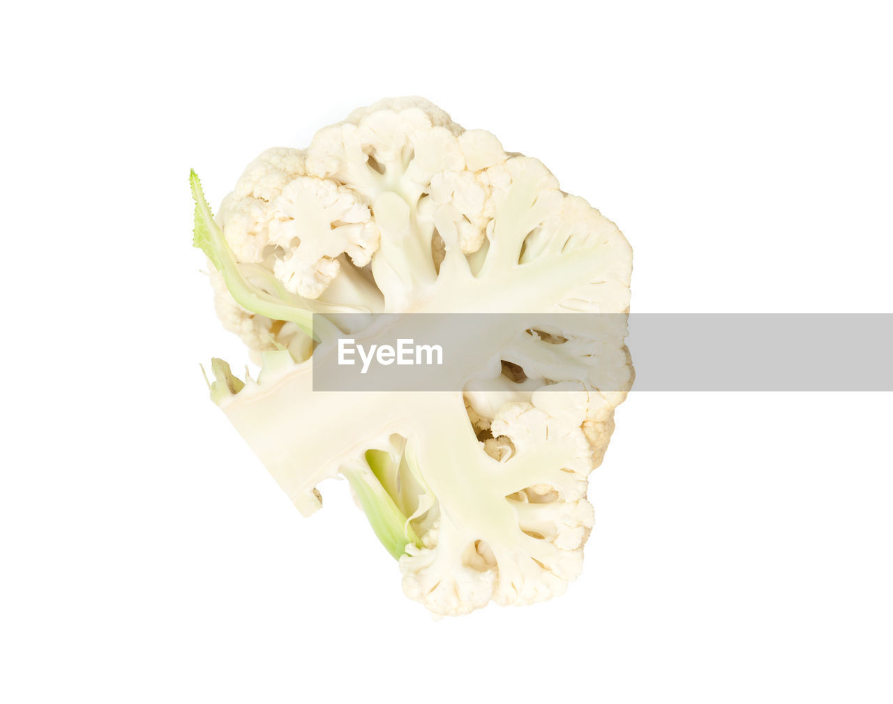 studio shot, white background, freshness, indoors, still life, close-up, food, cut out, food and drink, white color, vegetable, wellbeing, no people, healthy eating, copy space, flowering plant, inflorescence, flower, plant, beauty in nature, flower head, snack
