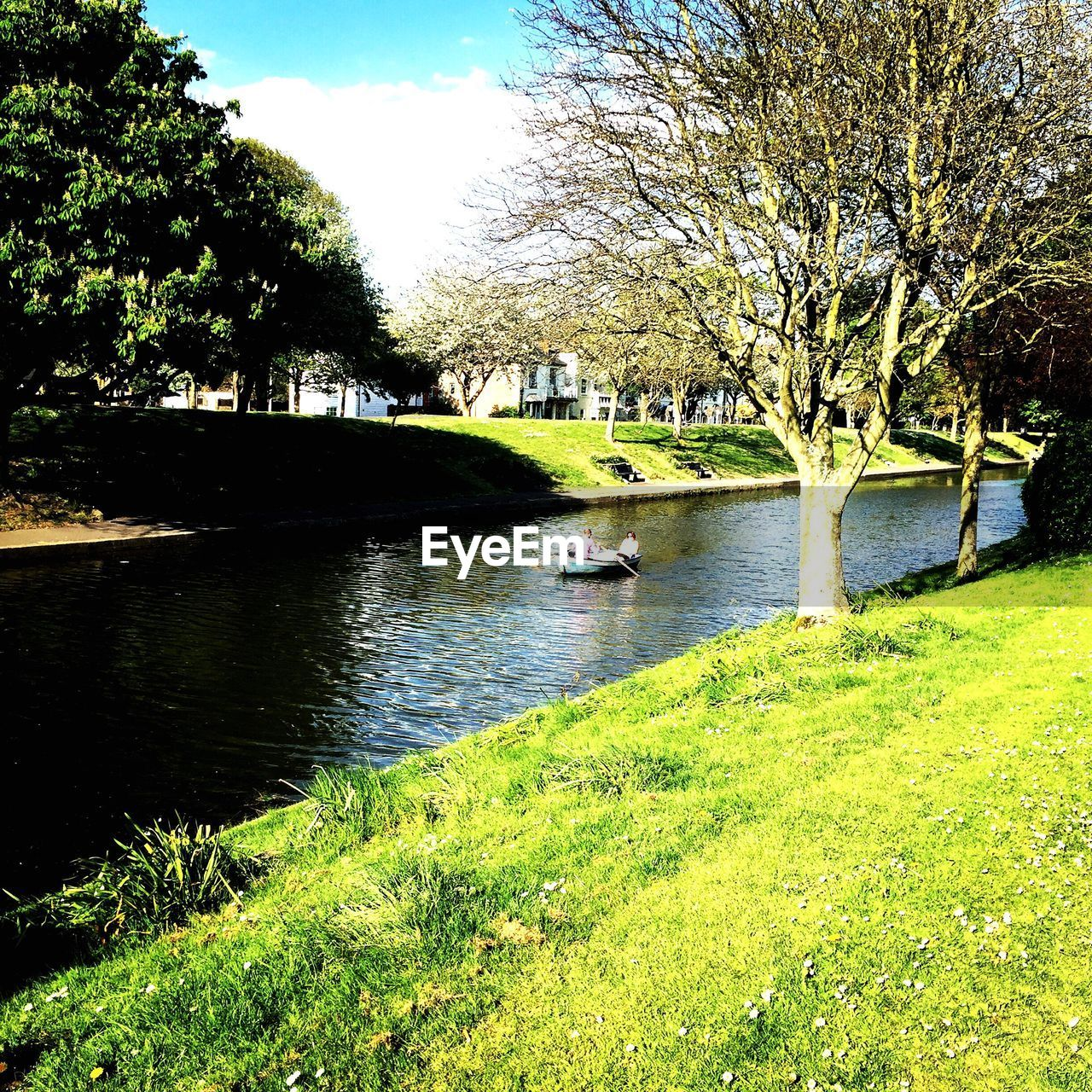 tree, grass, water, river, nature, growth, green color, outdoors, sunlight, architecture, day, no people, beauty in nature, sky