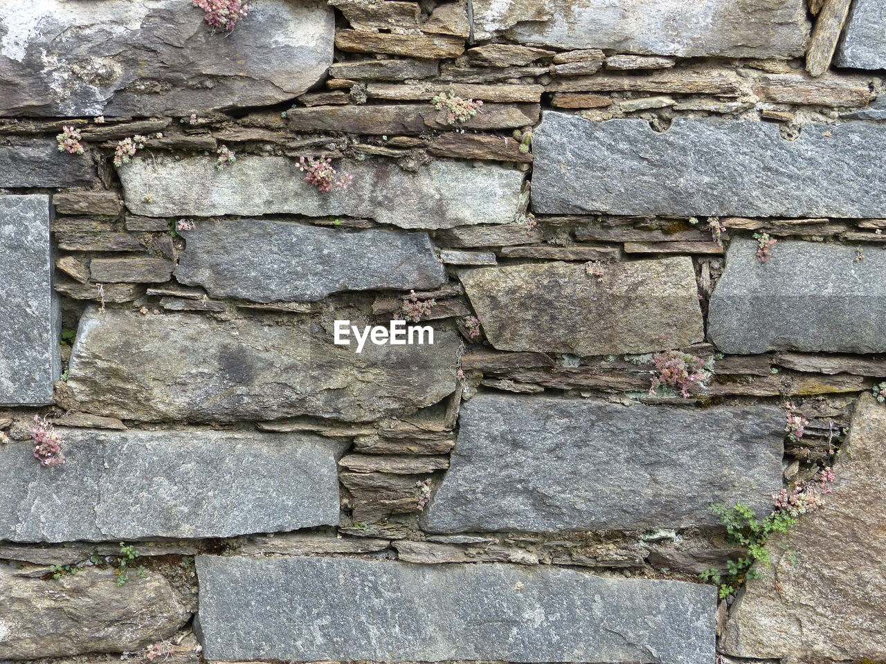 CLOSE-UP OF STONE WALL
