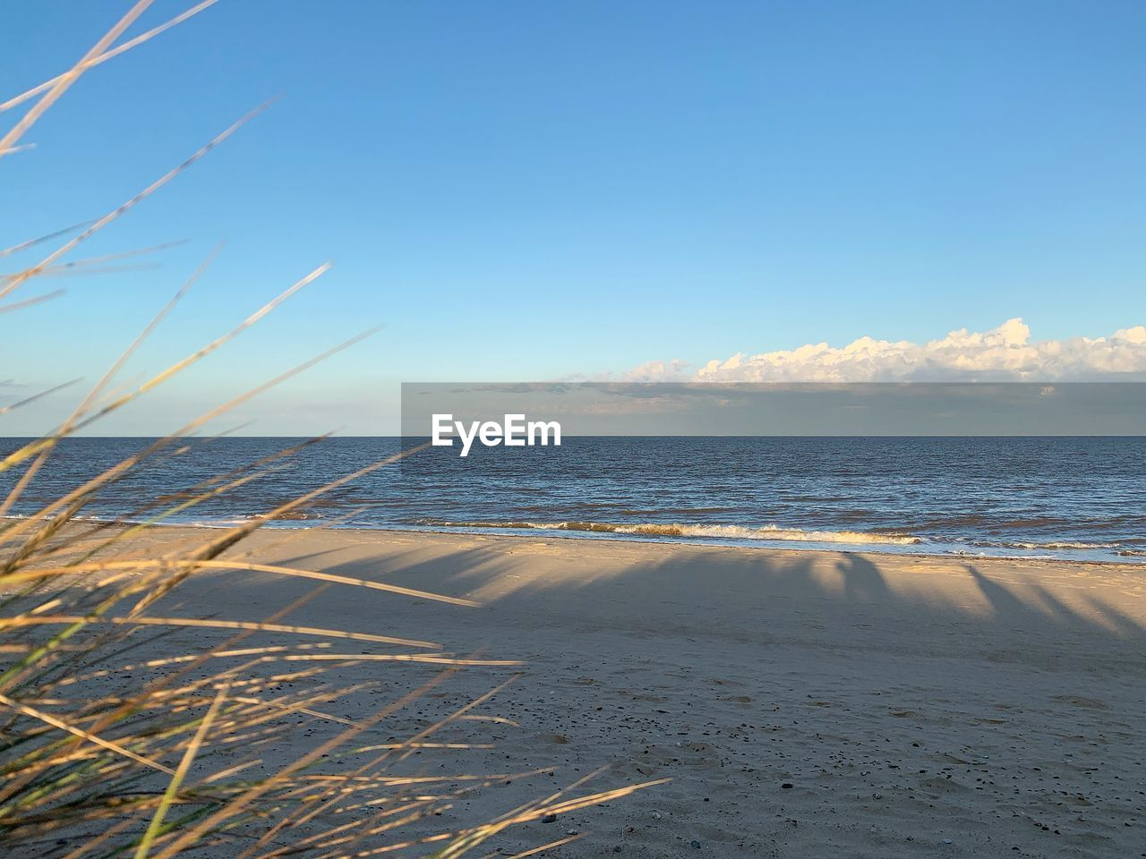 sea, water, sky, beach, land, tranquility, tranquil scene, beauty in nature, scenics - nature, sand, horizon over water, horizon, nature, no people, cloud - sky, sunlight, non-urban scene, day, idyllic