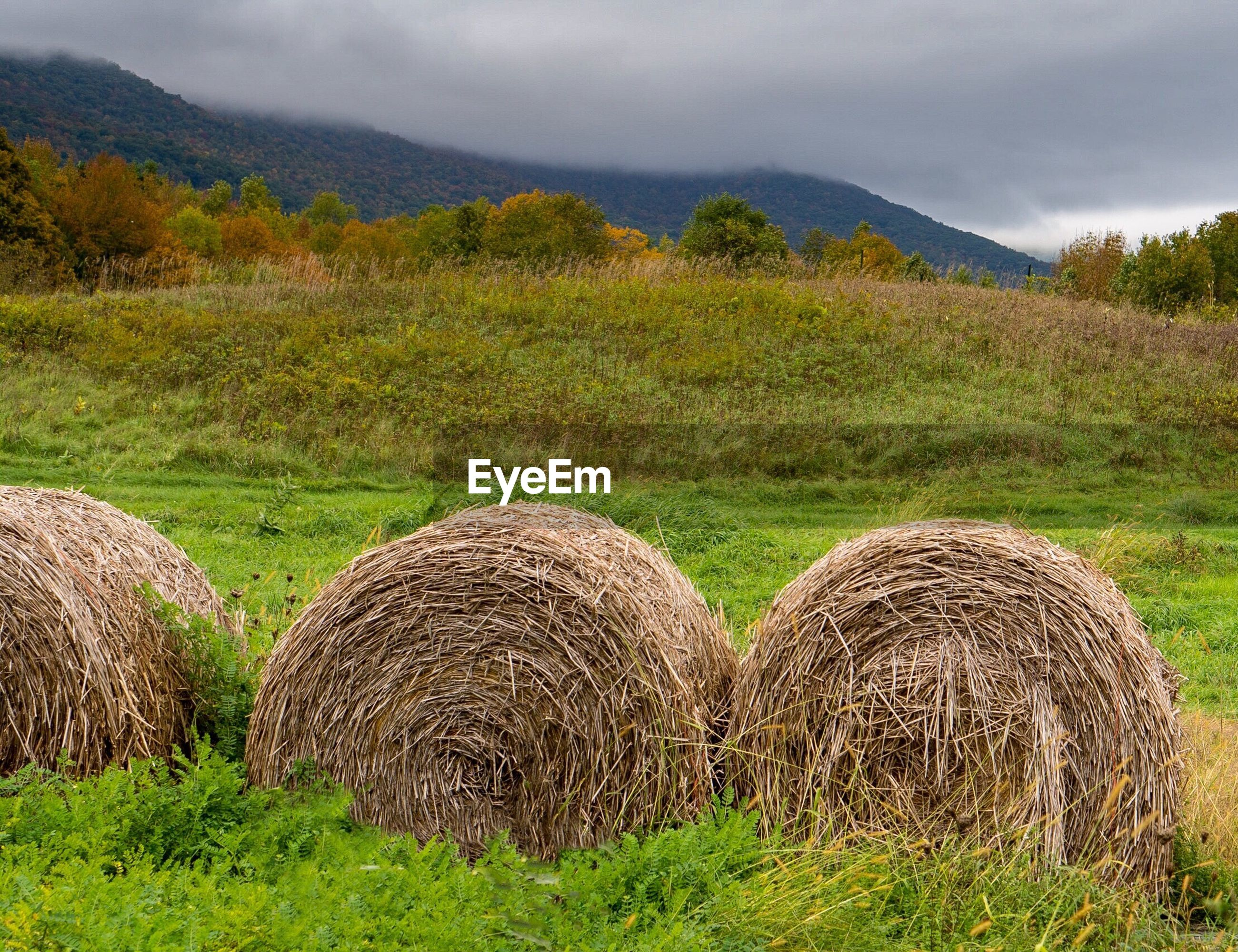 HAY BALES ON FIELD BY MOUNTAINS