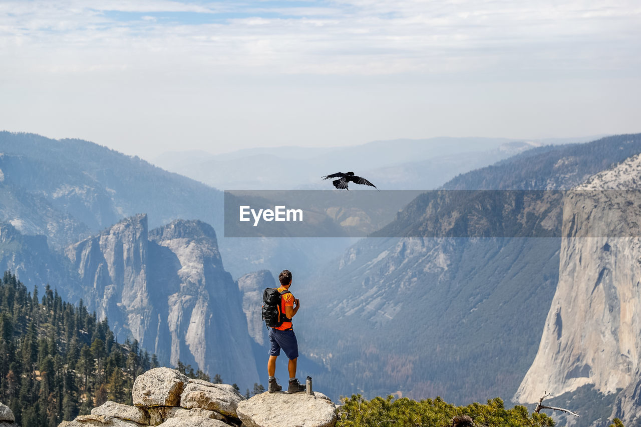 Man looking at bird while standing against mountains