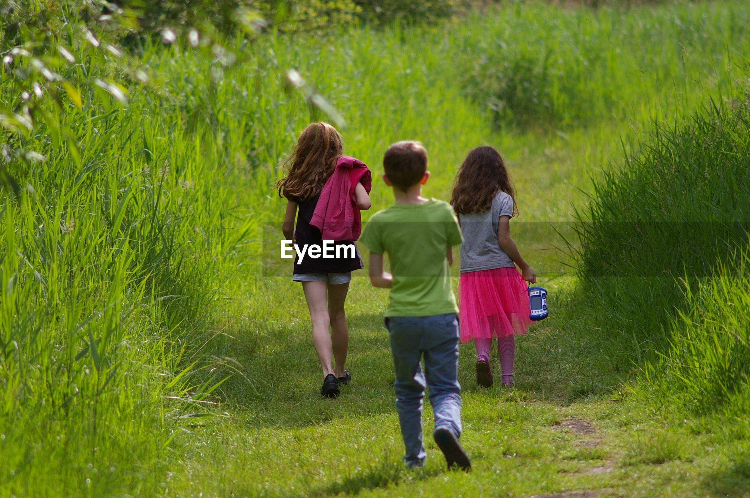 Rear view of children walking on grassy field in park