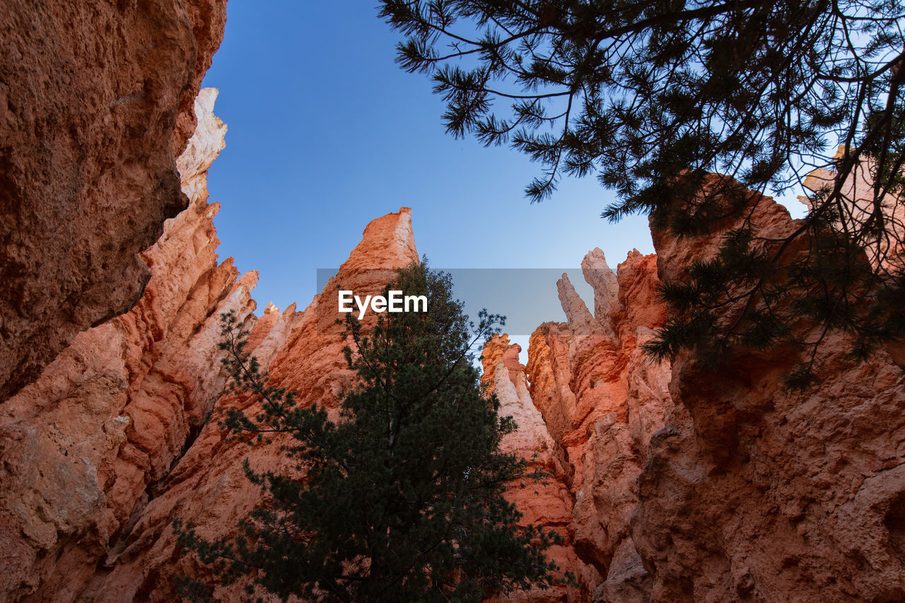sky, rock, rock formation, rock - object, plant, tree, low angle view, beauty in nature, tranquility, nature, no people, solid, scenics - nature, mountain, tranquil scene, geology, non-urban scene, day, physical geography, land, outdoors, formation, eroded, mountain peak, arid climate