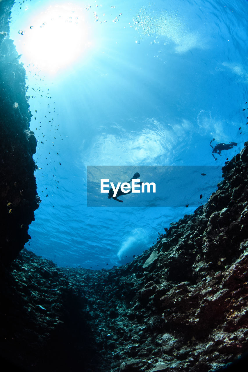 Low Angle View Of Person Diving In Sea