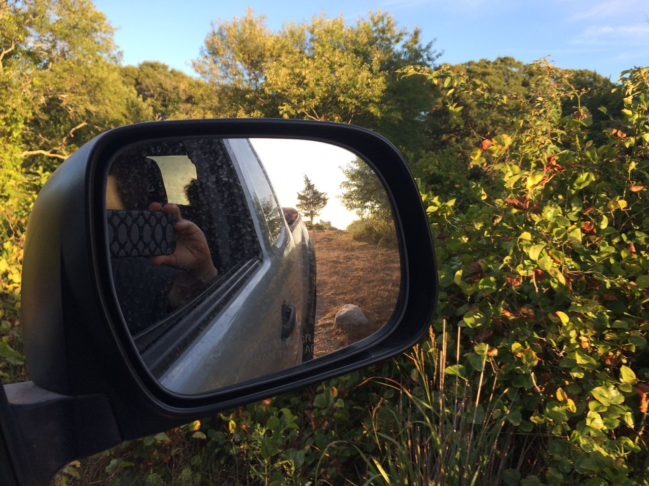 REFLECTION OF CAR ON SIDE-VIEW MIRROR AGAINST TREES