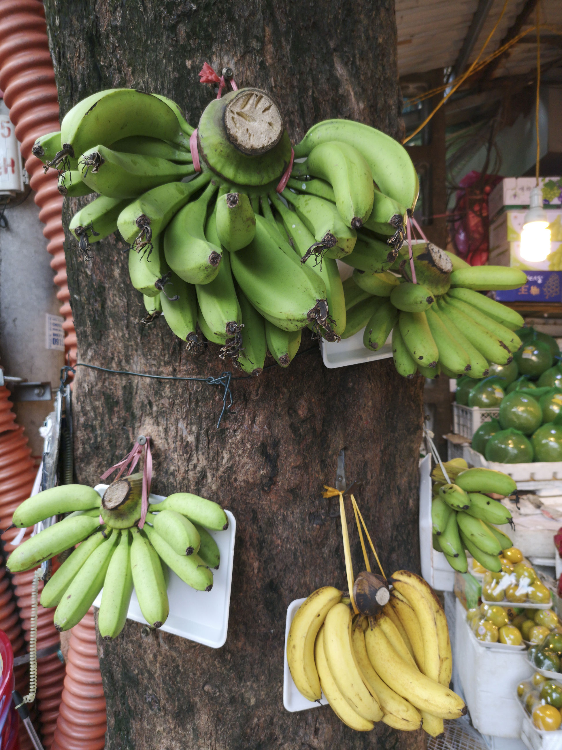 Close-up of bananas for sale at market stall