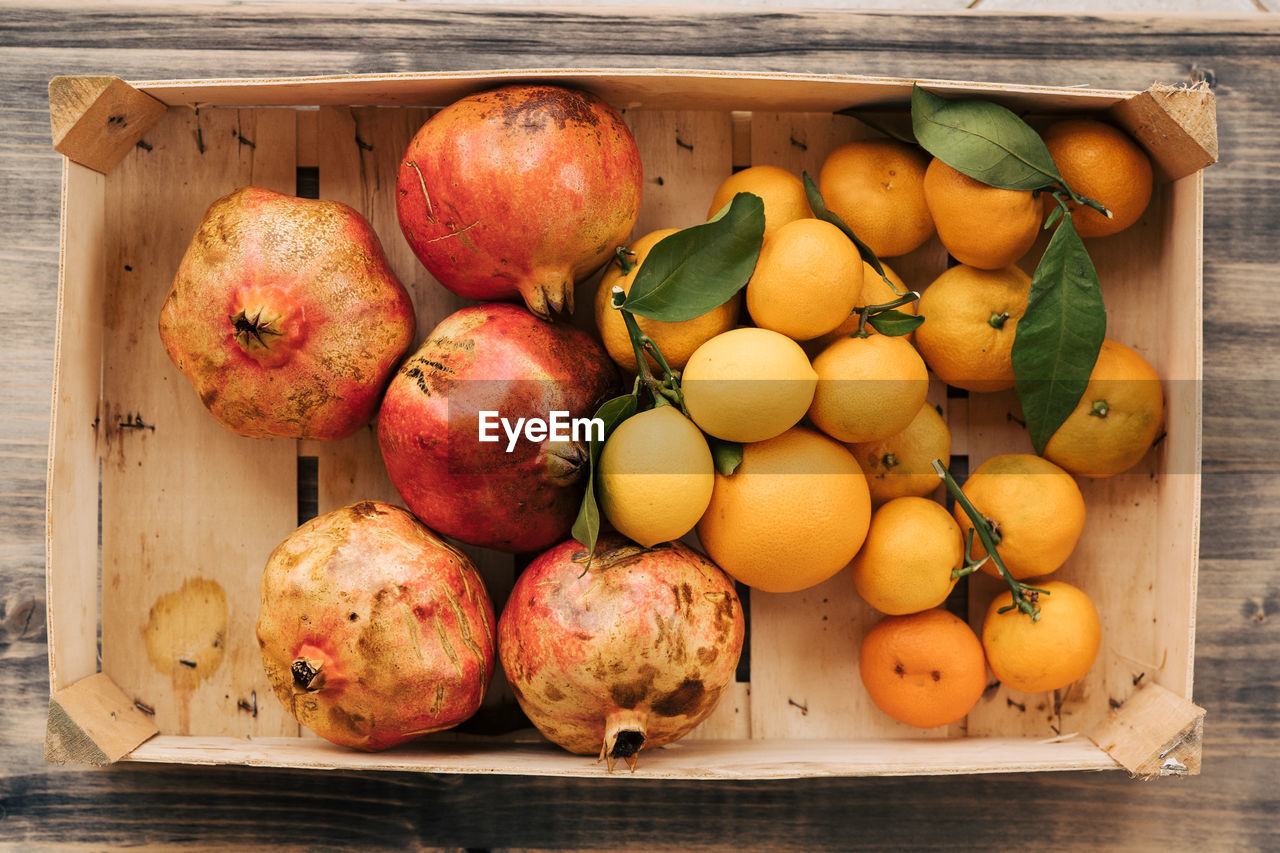 DIRECTLY ABOVE SHOT OF FRUITS IN CONTAINER