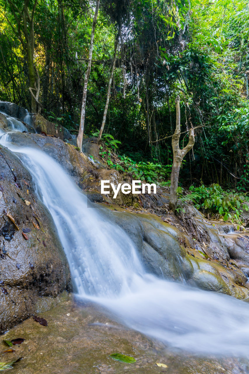 waterfall, flowing water, long exposure, water, nature, motion, scenics, beauty in nature, tree, blurred motion, no people, tranquil scene, forest, outdoors, rock - object, day, tranquility, travel destinations, rapid, growth, tree trunk, branch