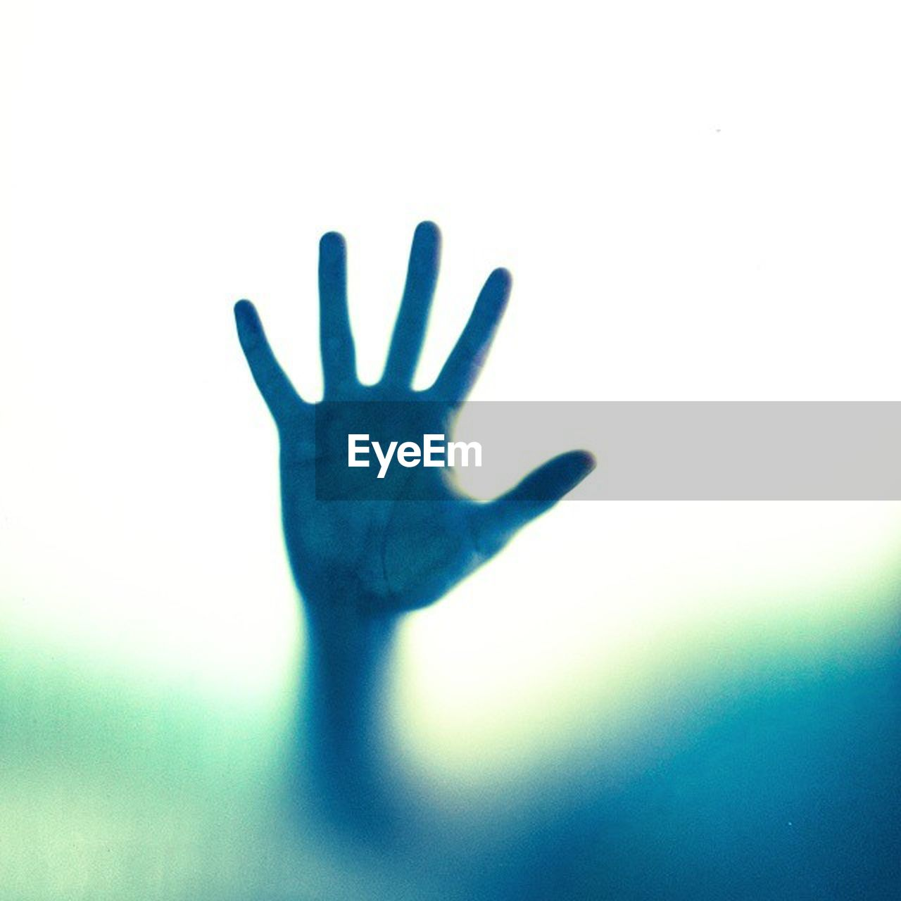 human hand, hand, human body part, human finger, finger, one person, palm, body part, glass - material, spooky, unrecognizable person, fear, silhouette, touching, indoors, real people, transparent, men, emotion