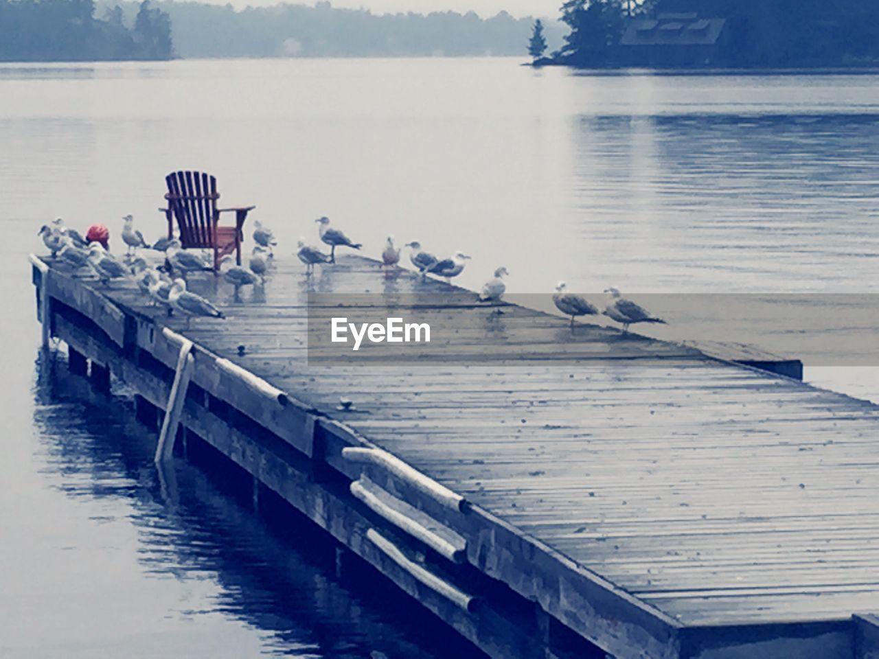 water, lake, pier, reflection, nature, outdoors, jetty, day, no people, beauty in nature, scenics, nautical vessel, sky