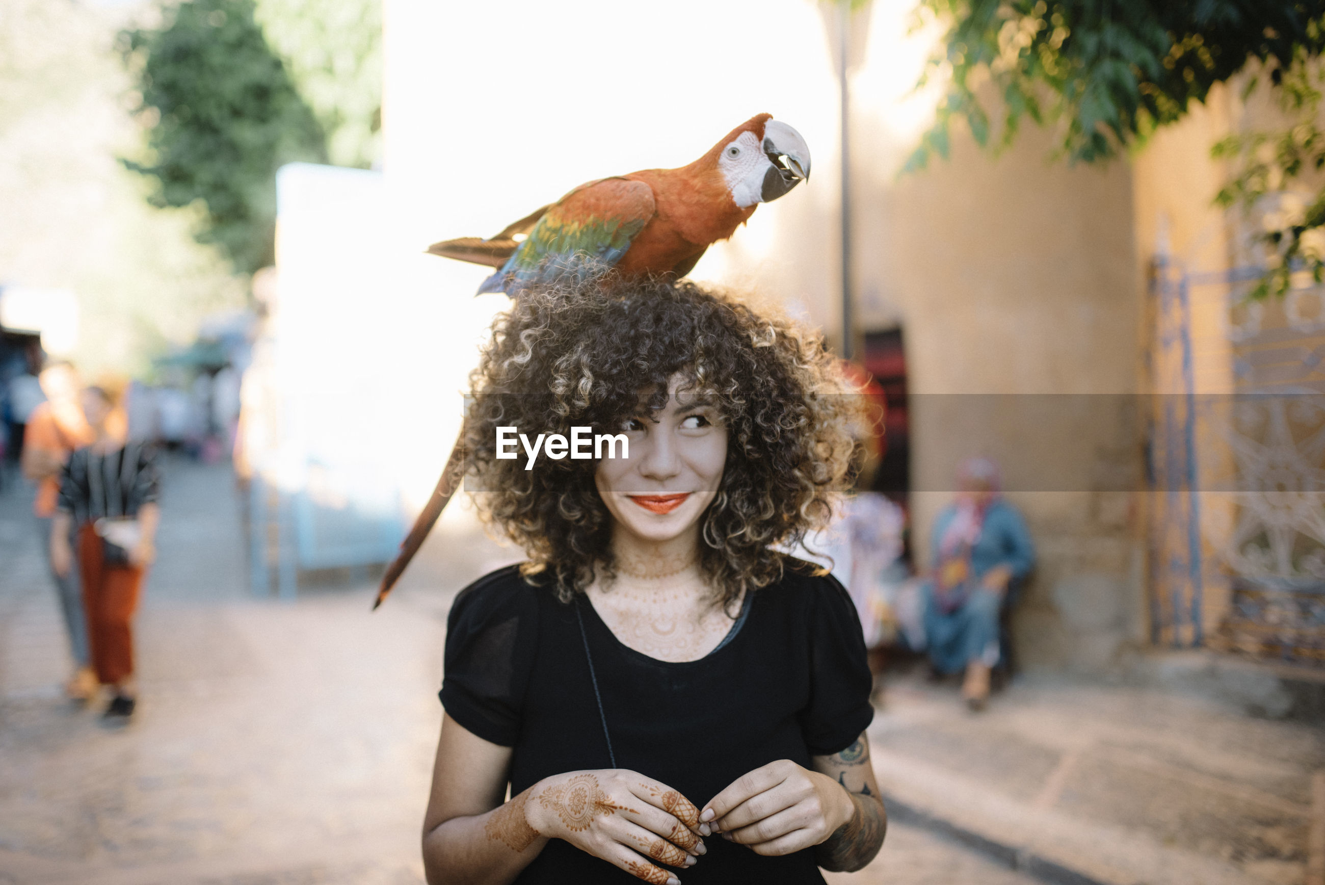 Young woman with macaw on head in city