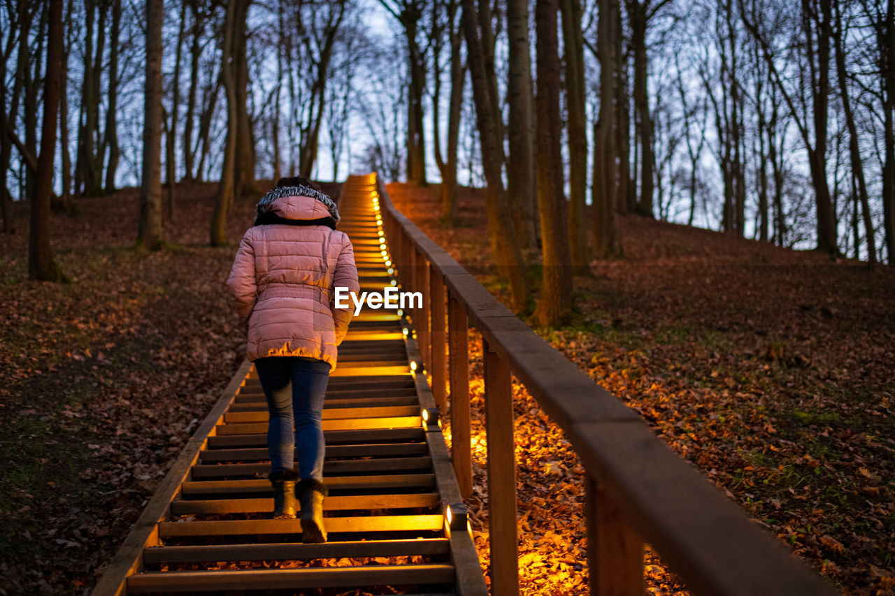 Rear view of woman walking on staircase in forest during winter