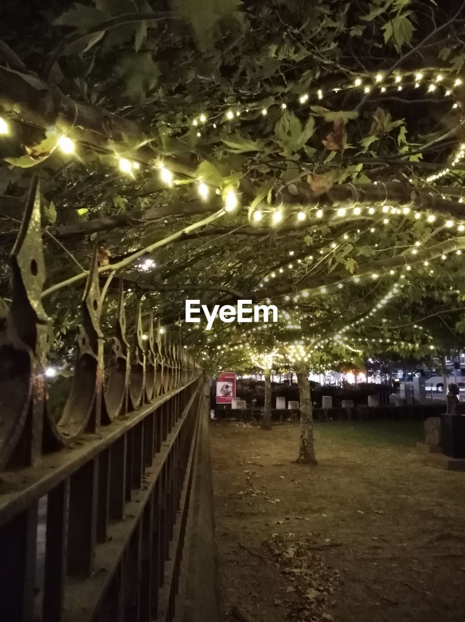 illuminated, night, lighting equipment, celebration, christmas lights, built structure, electricity, outdoors, tree, no people, architecture