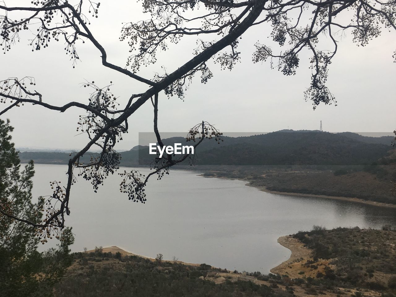 tree, nature, mountain, lake, tranquility, beauty in nature, scenics, tranquil scene, outdoors, water, landscape, no people, day, sky, branch