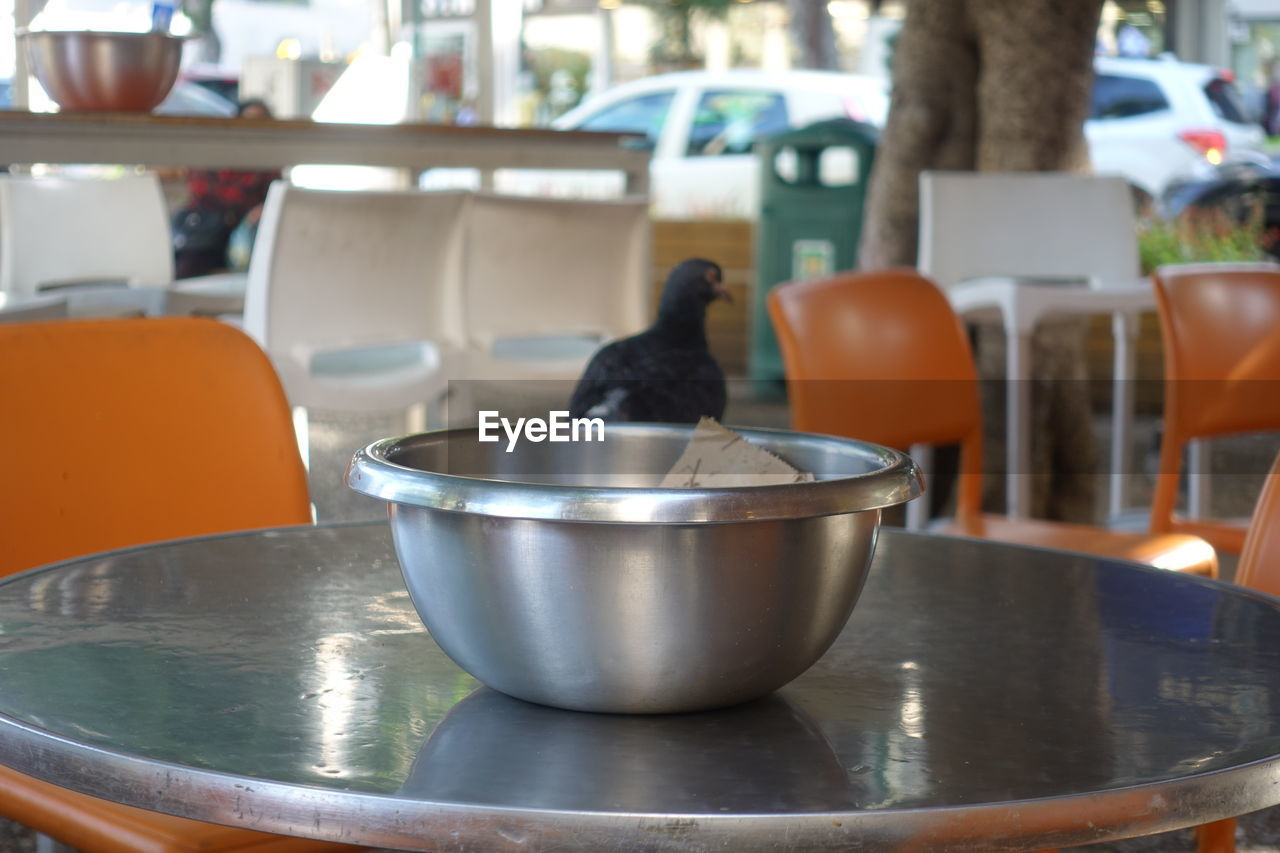 animal themes, no people, animal, bird, vertebrate, focus on foreground, container, table, orange color, food, household equipment, indoors, domestic room, animal wildlife, close-up, food and drink, animals in the wild, day, metal, bowl, steel