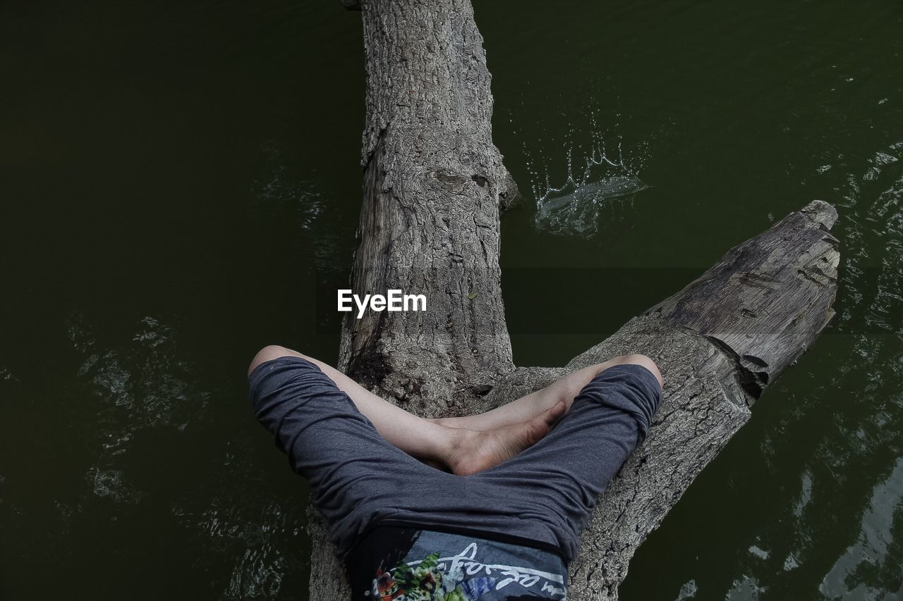 Low section of man sleeping on tree above lake