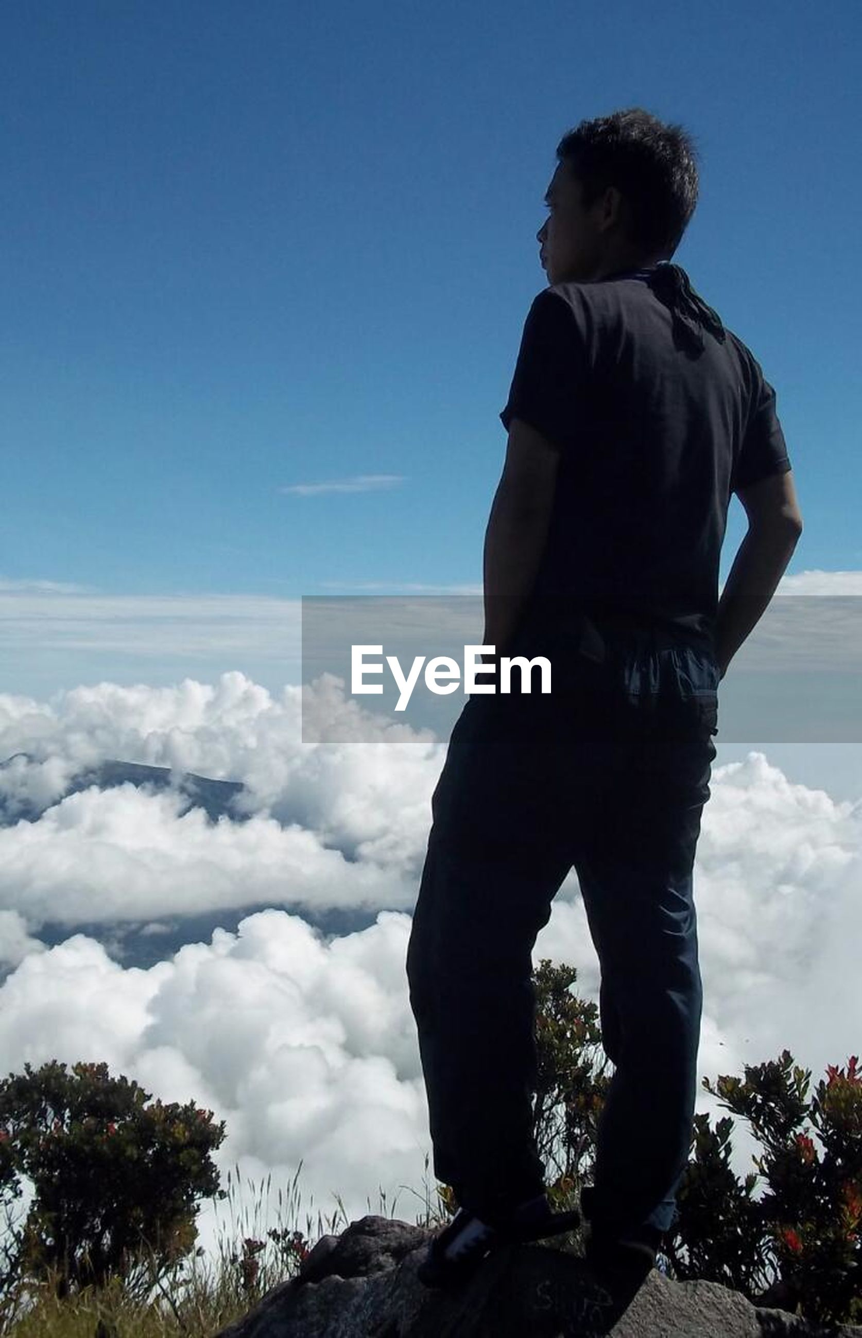 sky, blue, lifestyles, standing, cloud - sky, leisure activity, rear view, cloud, tranquility, tranquil scene, beauty in nature, nature, scenics, tree, casual clothing, mountain, men, low angle view