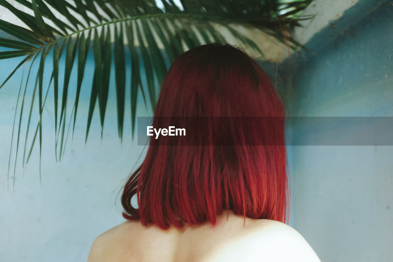 Rear View Of Shirtless Woman With Red Hair