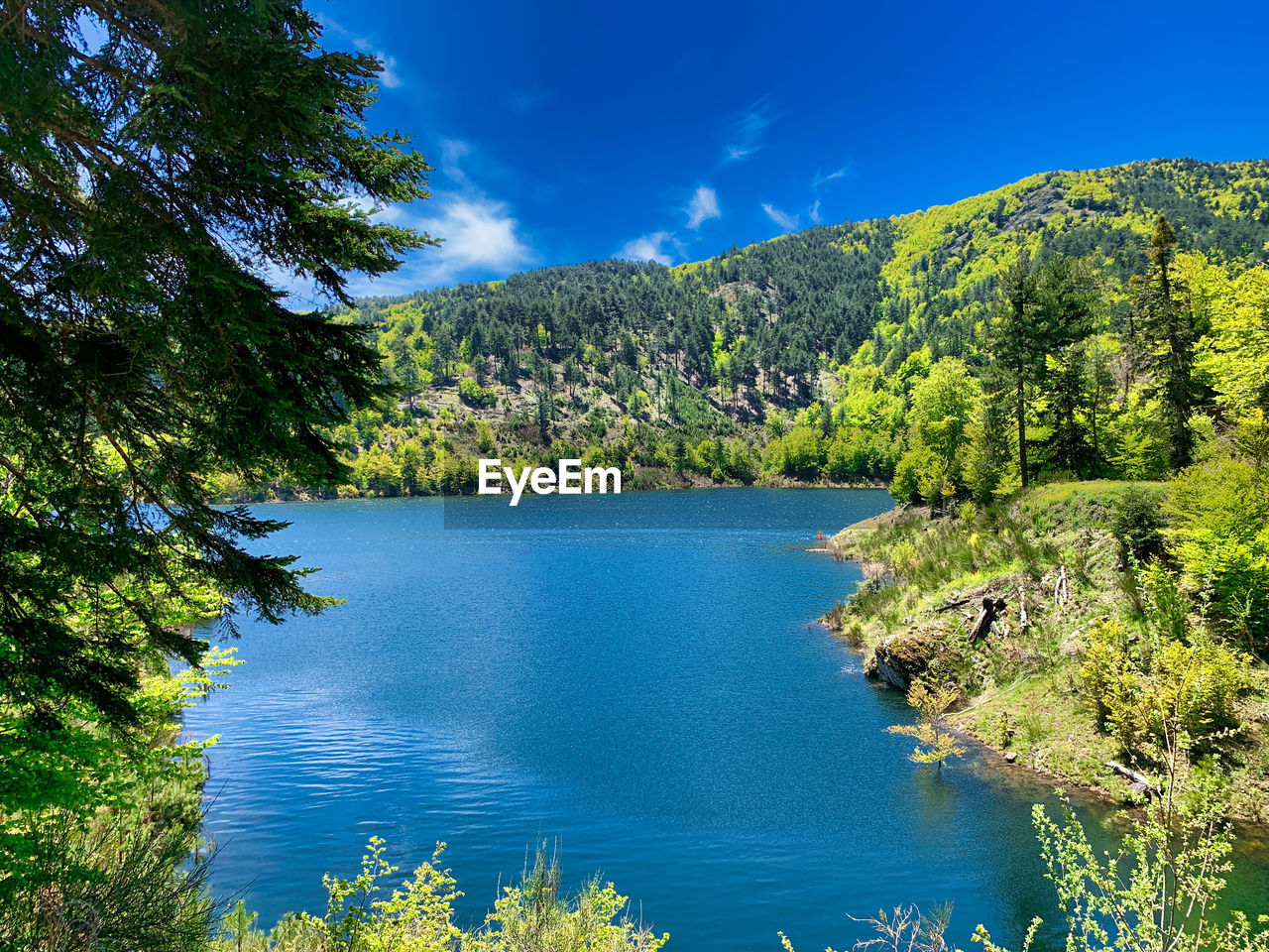 water, tree, beauty in nature, scenics - nature, plant, tranquil scene, tranquility, sky, blue, mountain, non-urban scene, nature, lake, idyllic, green color, growth, no people, day, sunlight