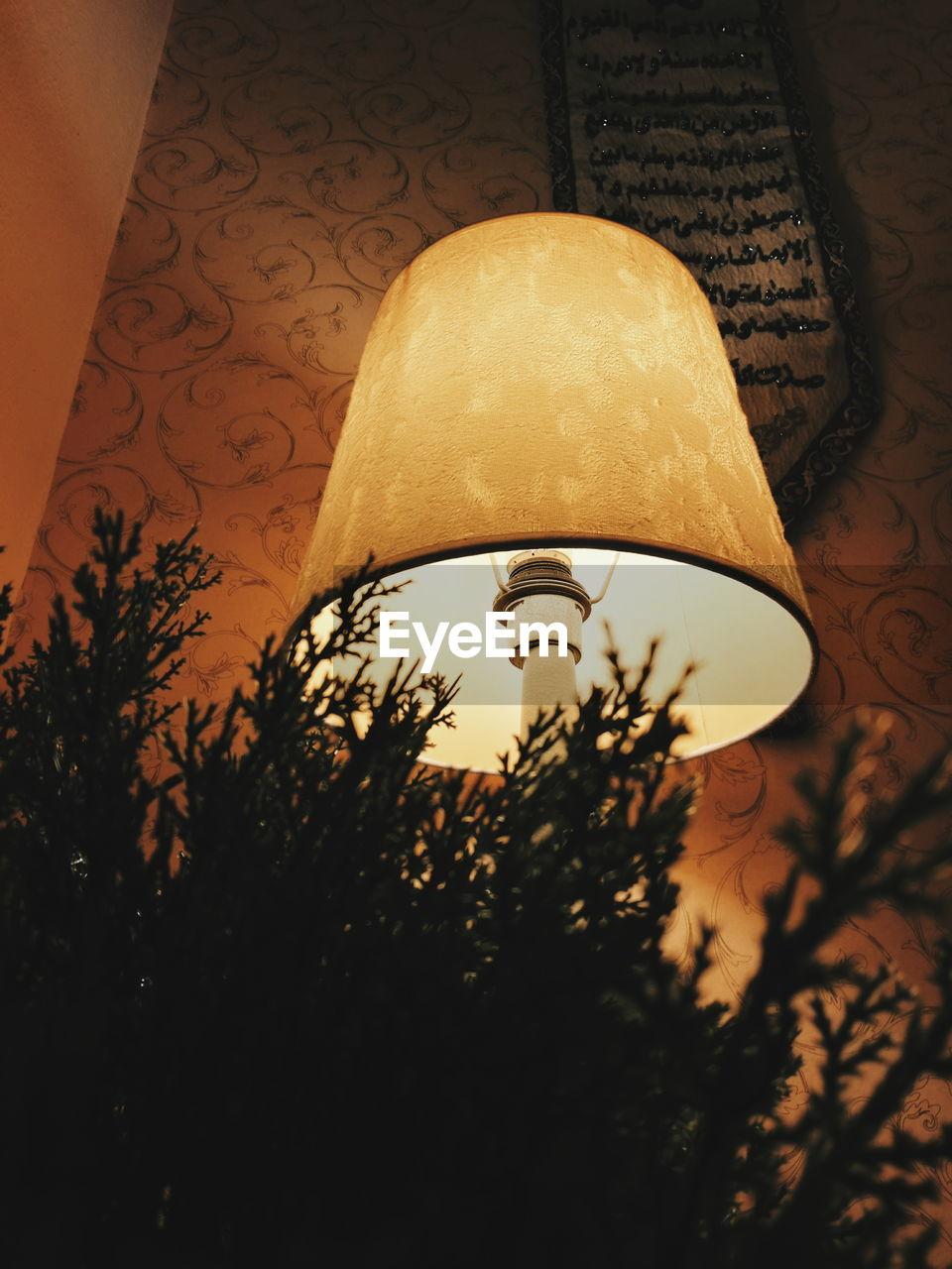 indoors, lighting equipment, no people, lamp shade, illuminated, close-up, tree, night