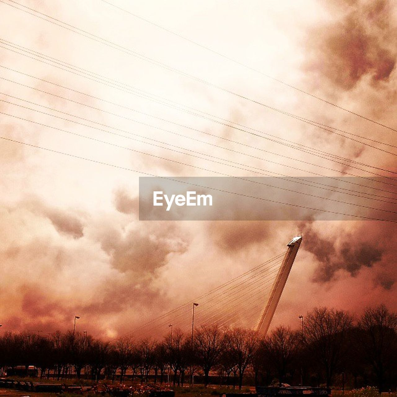 sky, cloud - sky, field, sunset, cable, connection, outdoors, nature, no people, low angle view, landscape, grass, electricity pylon, beauty in nature, technology, scenics, day, tree