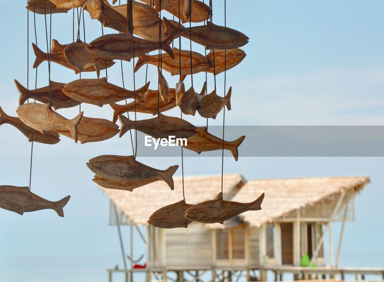 sky, water, nature, no people, day, focus on foreground, architecture, sea, animal, hanging, outdoors, wood - material, built structure, animal themes, in a row, roof, clear sky, sunlight, vertebrate
