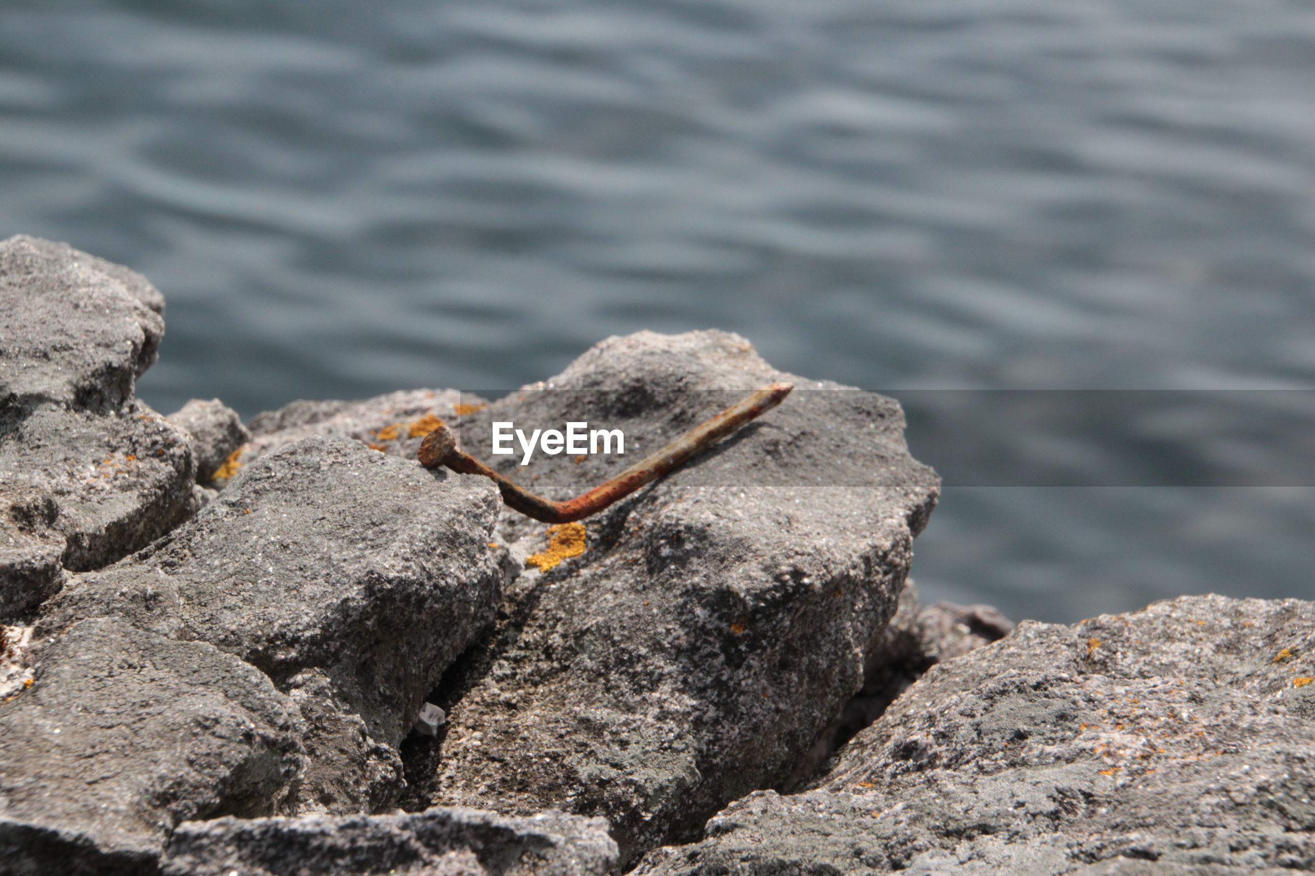 High angle view of rusty metallic nail on rock