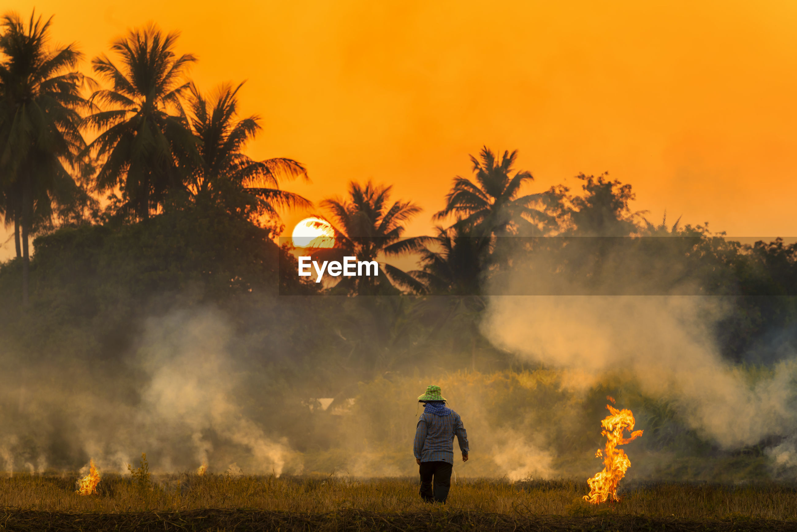 Rear view of man standing amidst smoky field against orange sky