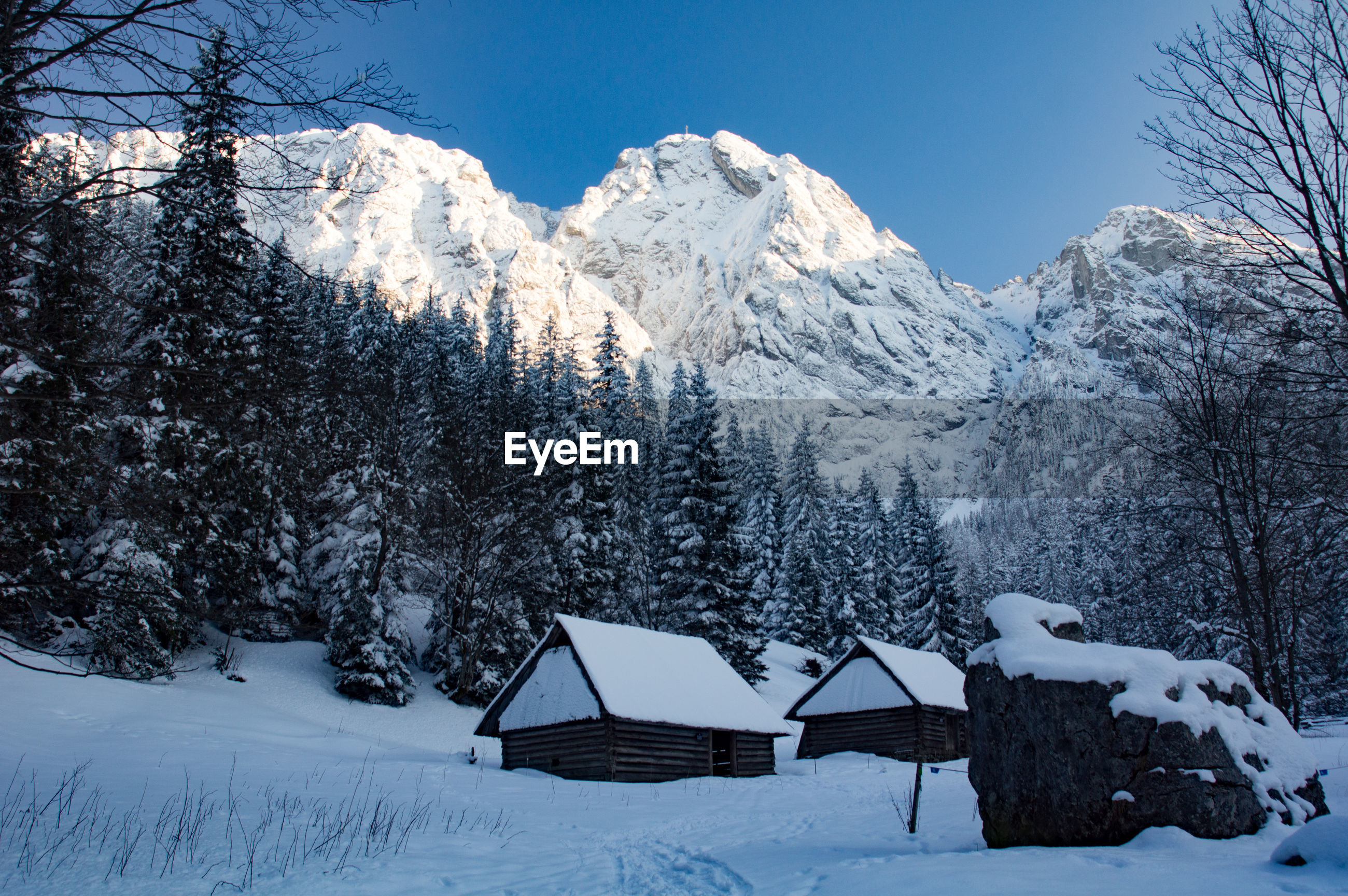 SNOW COVERED LANDSCAPE AGAINST MOUNTAIN