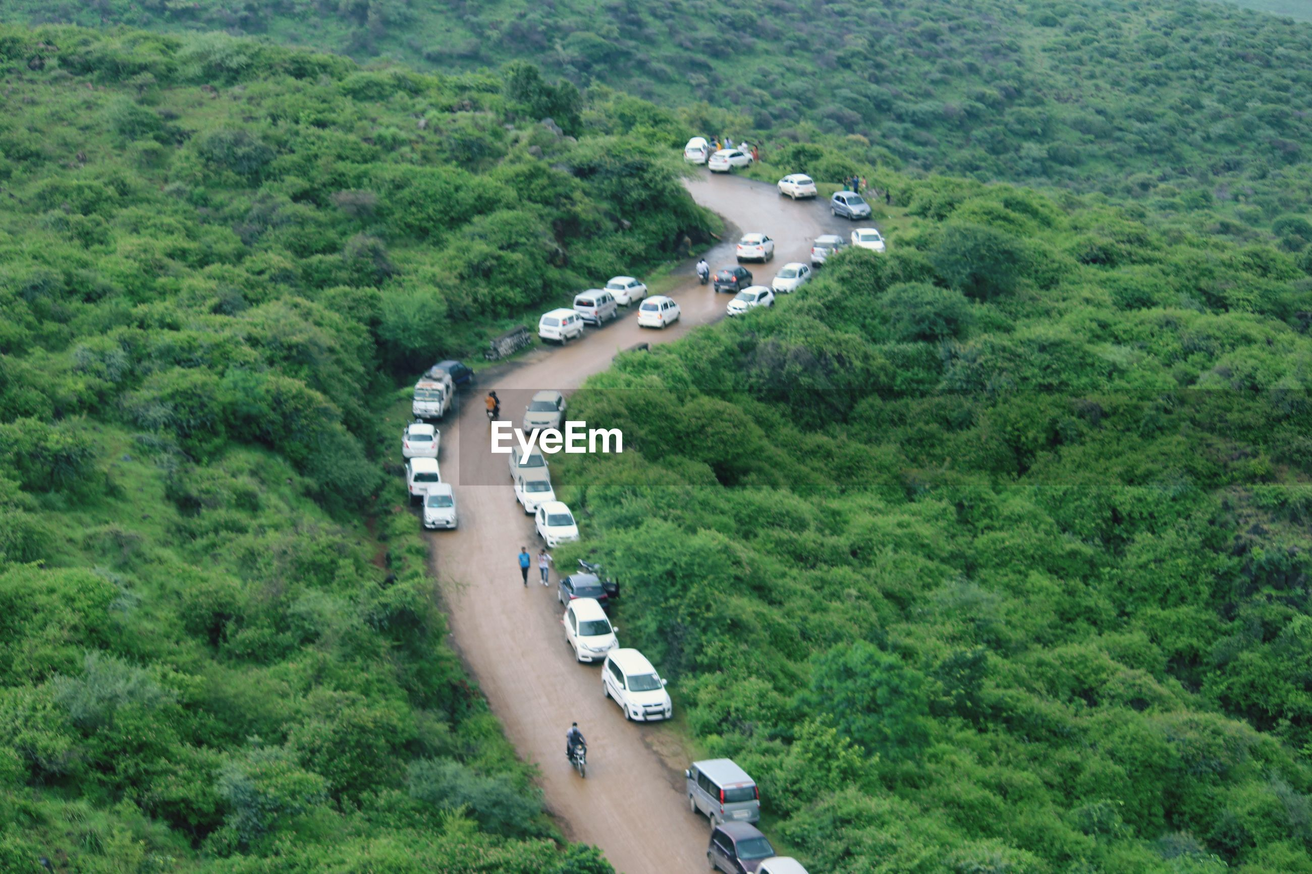 HIGH ANGLE VIEW OF VEHICLES ON ROAD AMIDST TREES