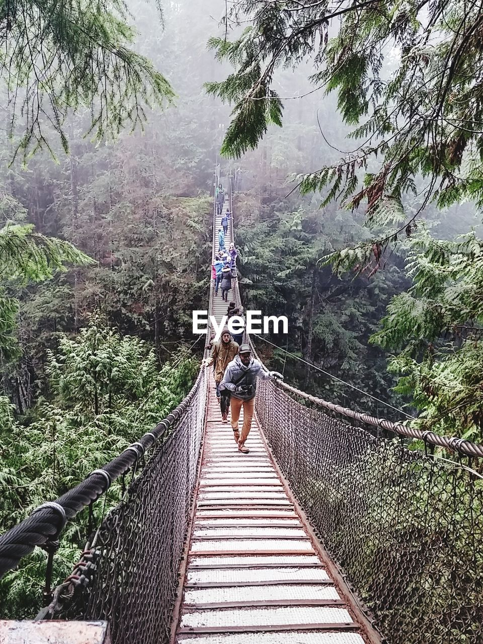 rope bridge, real people, rear view, tree, mountain, bridge - man made structure, walking, day, footbridge, railing, adventure, nature, full length, the way forward, one person, outdoors, lifestyles, transportation, leisure activity, forest, scenics, men, beauty in nature, sky, mammal, people