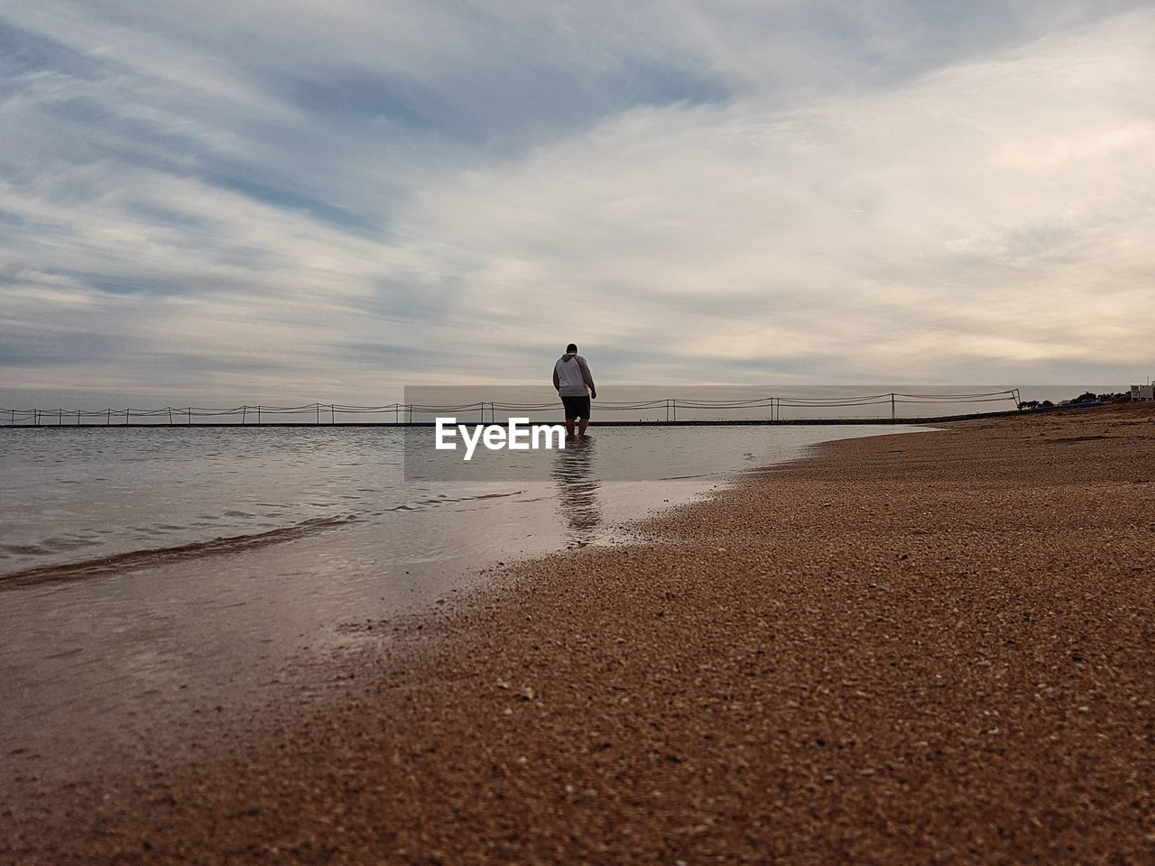 Rear view of man standing at beach