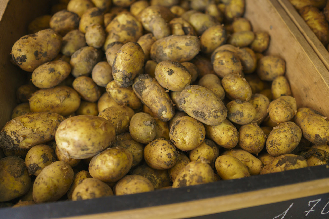 food, food and drink, freshness, large group of objects, retail, abundance, market, for sale, healthy eating, no people, still life, wellbeing, market stall, close-up, business, indoors, small business, potato, vegetable, selective focus, retail display