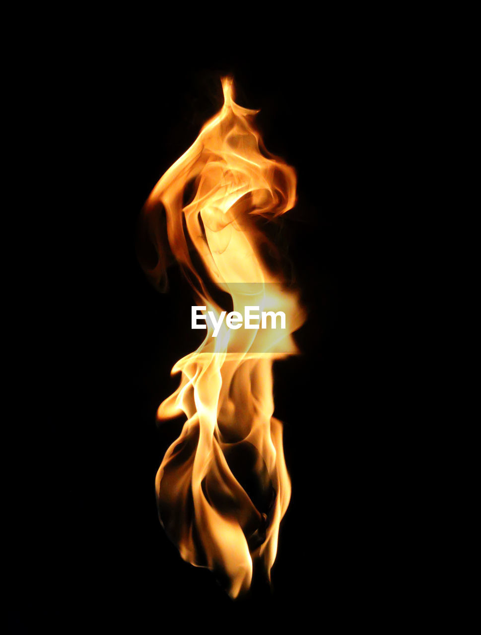 burning, flame, heat - temperature, black background, orange color, studio shot, no people, close-up, motion, night, bonfire, outdoors