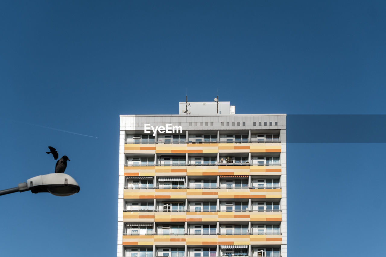 Low Angle View Of Crow Perching On Street Light By Residential Building Against Clear Blue Sky