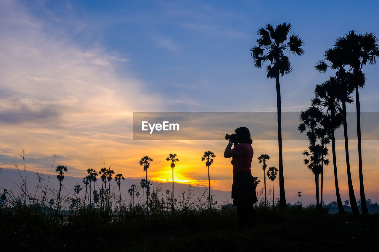 SILHOUETTE MAN STANDING BY PALM TREE AGAINST SKY AT SUNSET