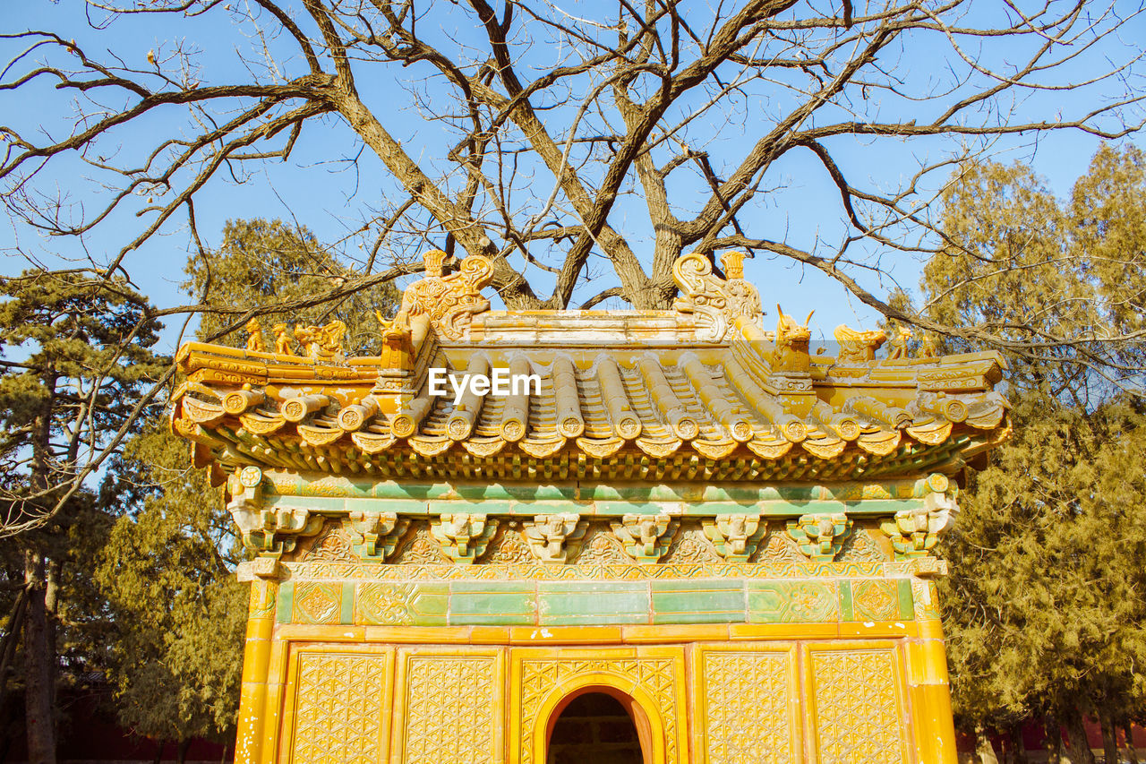 tree, architecture, built structure, belief, plant, religion, day, low angle view, travel destinations, sky, spirituality, place of worship, no people, building exterior, nature, building, gold colored, yellow, outdoors, ornate