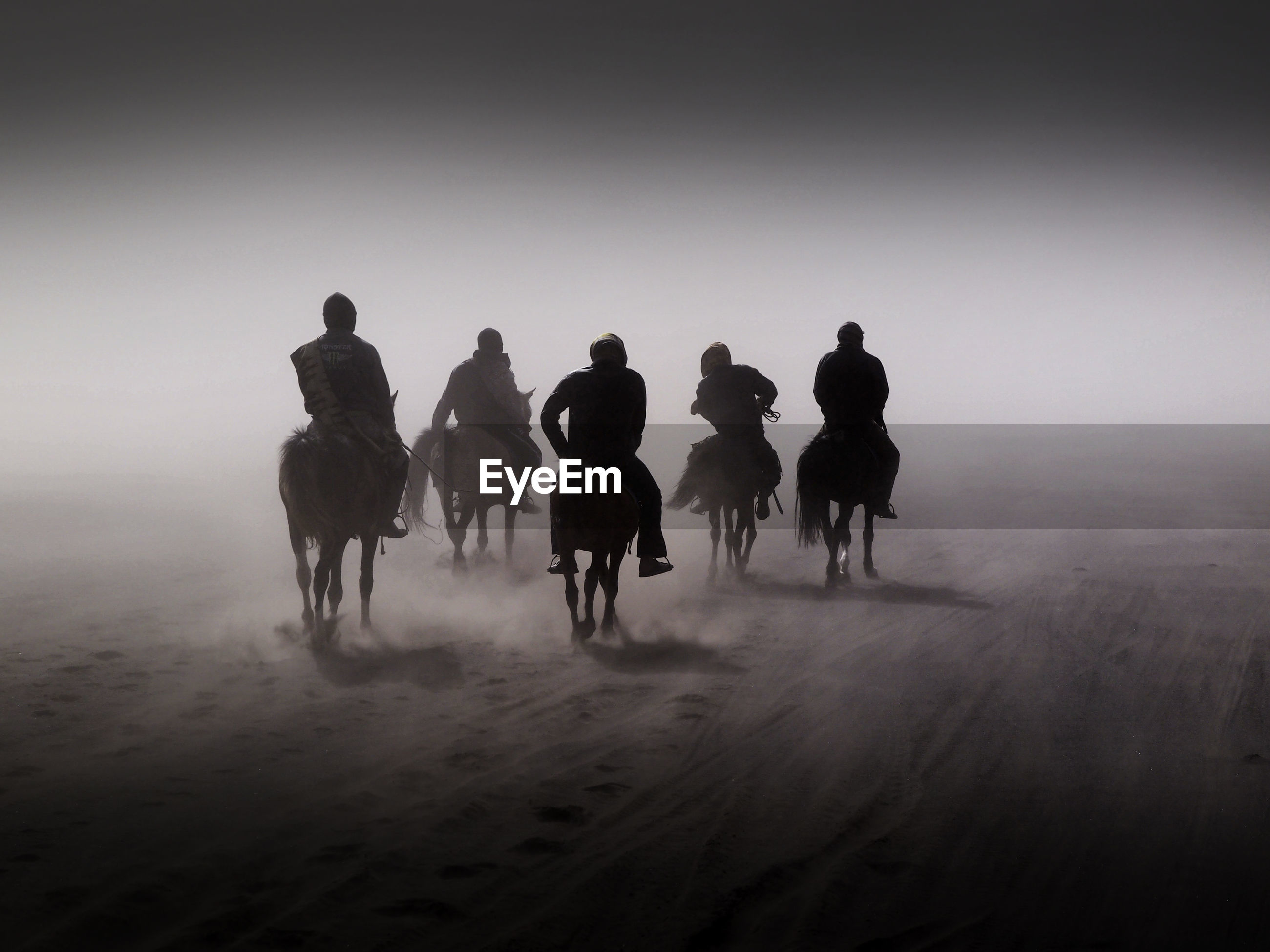 Silhouette people riding horses on field against sky during foggy weather
