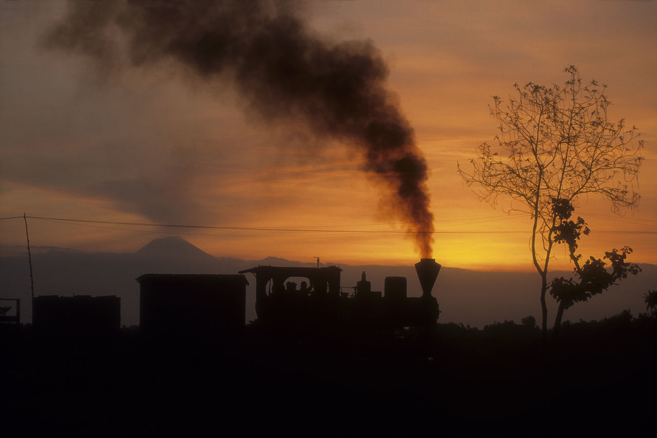 sunset, silhouette, sky, tree, architecture, built structure, building exterior, nature, smoke stack, beauty in nature, outdoors, cloud - sky, no people, factory, growth, industry, scenics, day