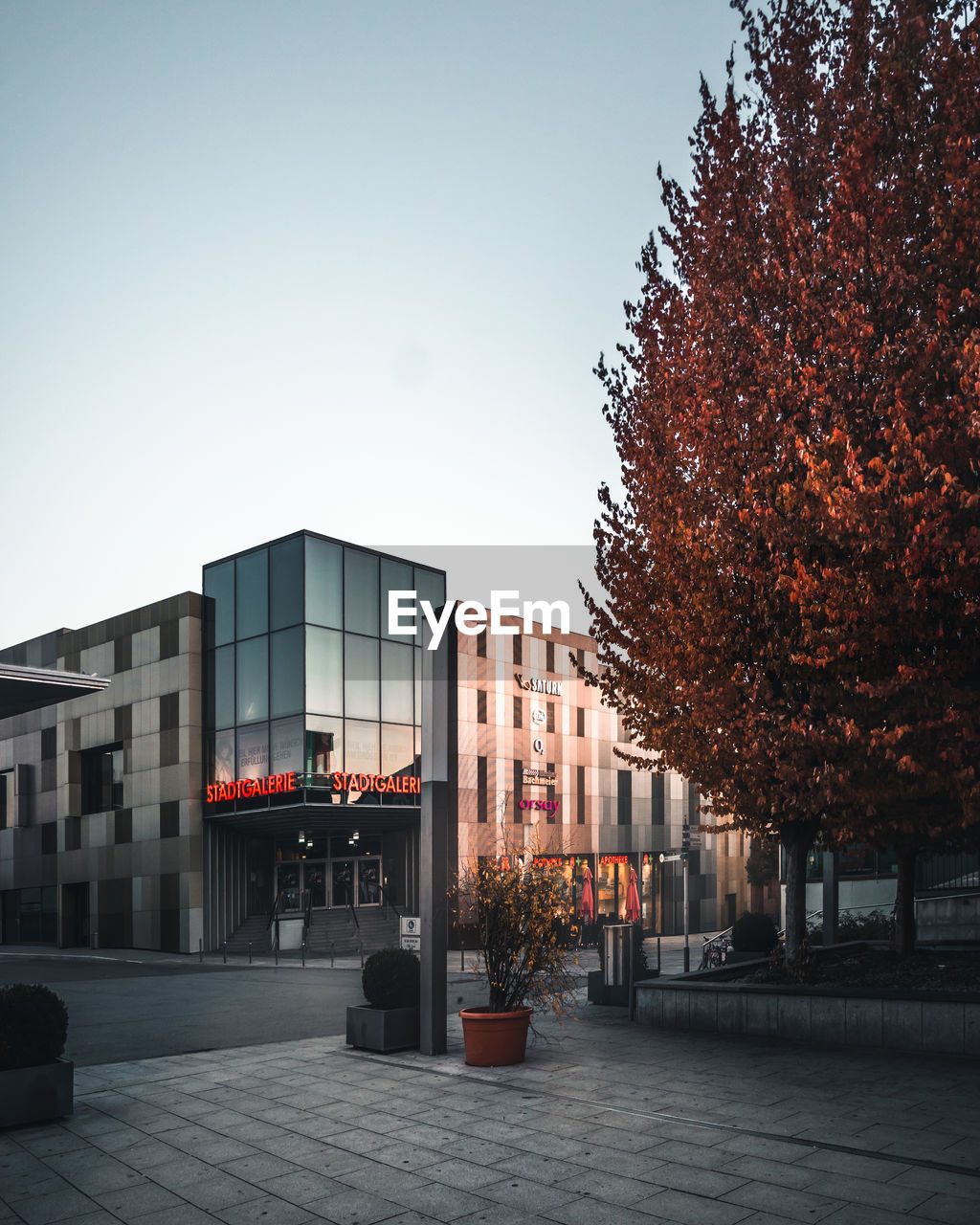 building exterior, architecture, built structure, sky, tree, autumn, city, nature, plant, building, change, no people, clear sky, street, day, outdoors, orange color, footpath, copy space, red