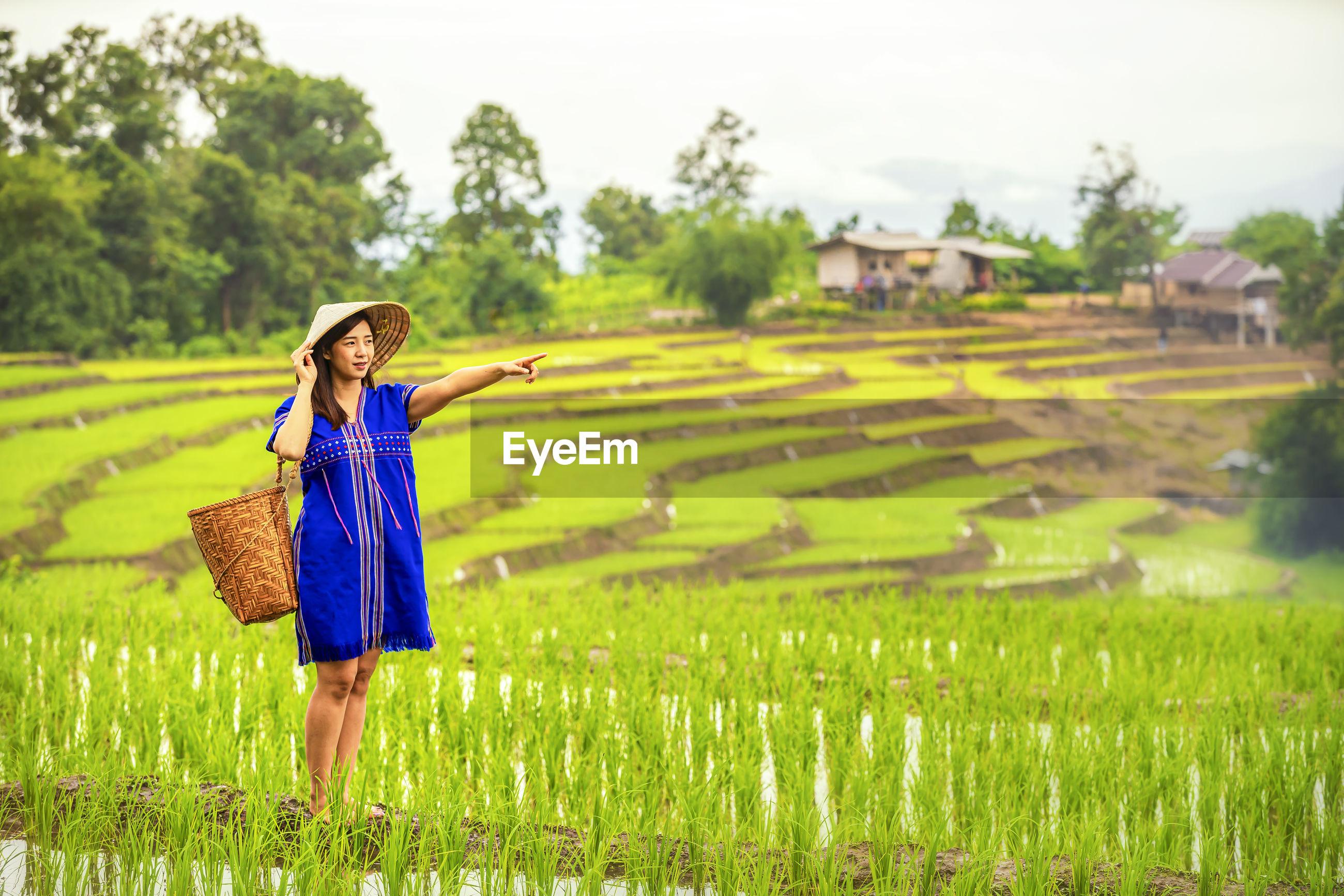 Pakhayo girl walking on the rice terraces. ban pa bong piang northern region in mae chaem, chiangmai
