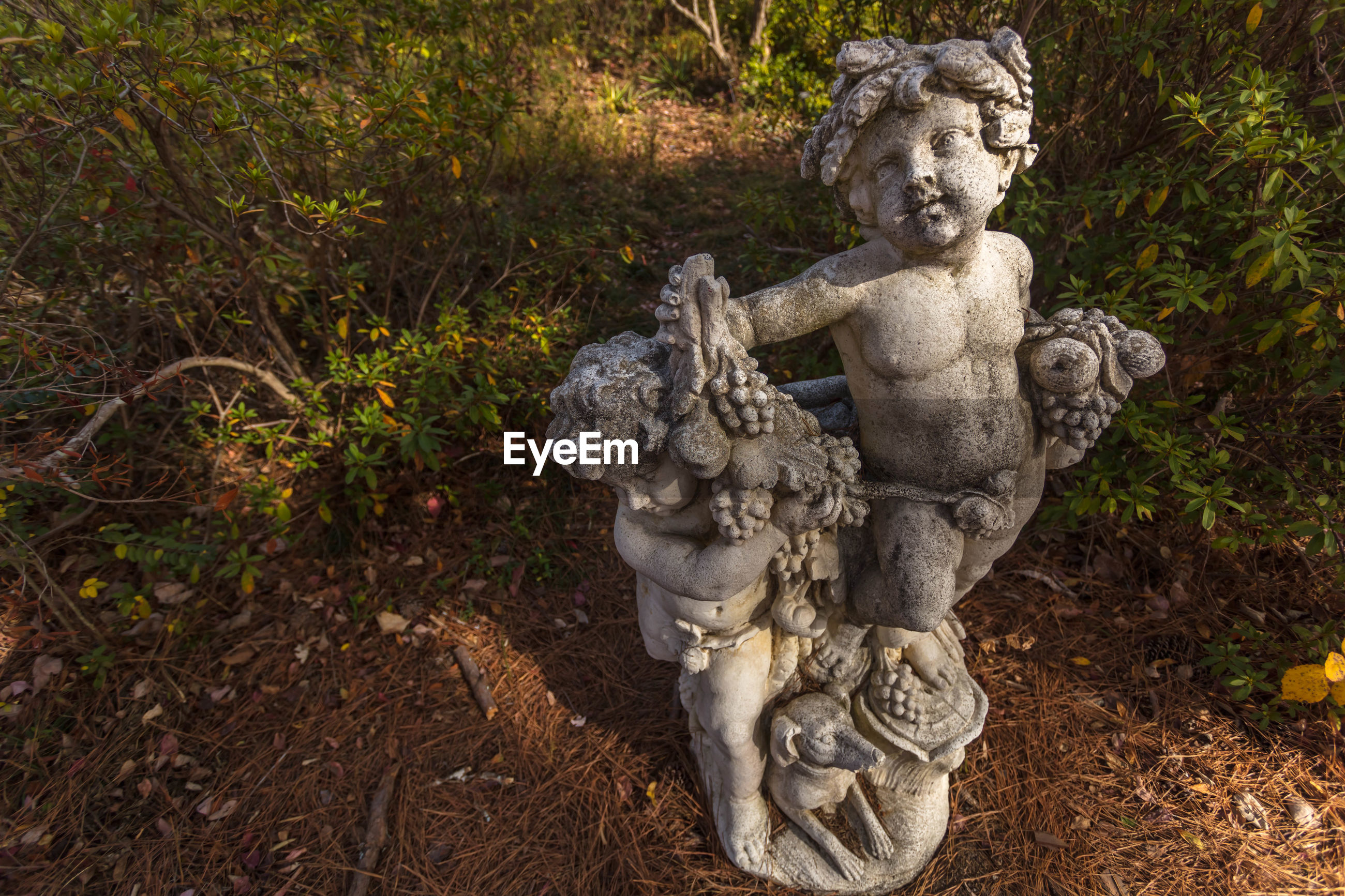 High angle view of statues at vines botanical gardens