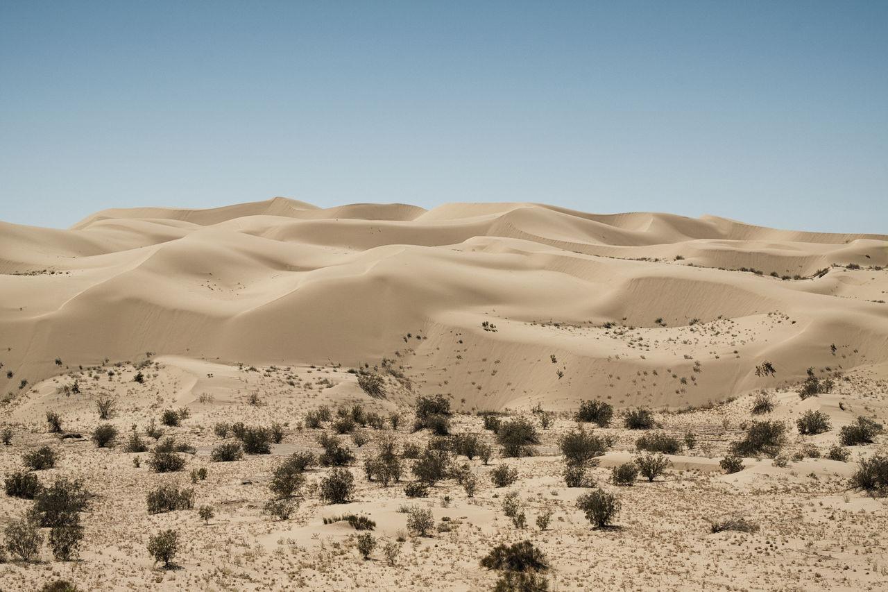 Scenic View Of Landscape At Desert